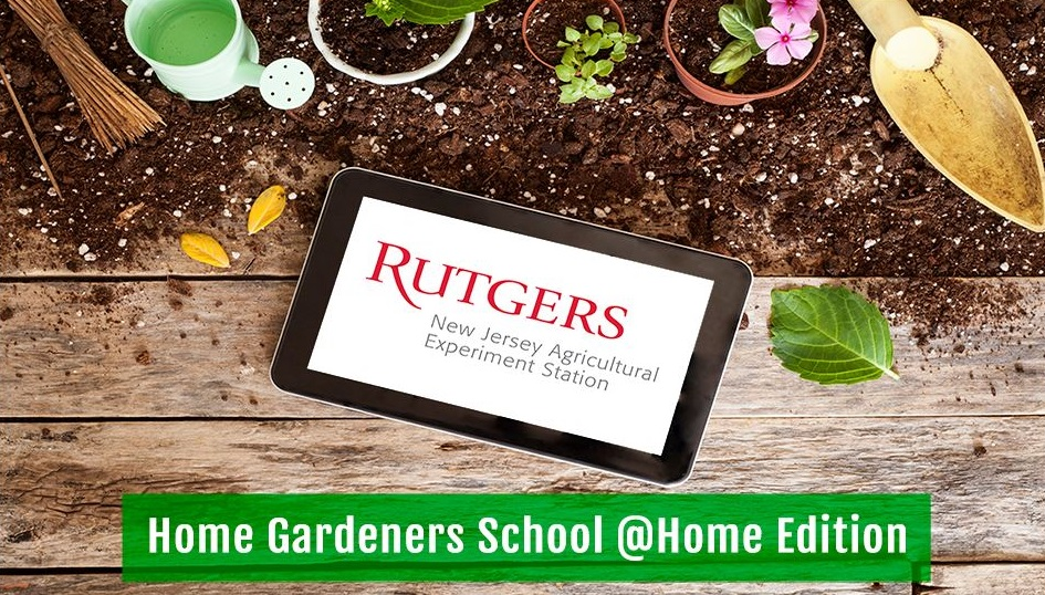 Rutgers NJAES Home Gardeners School @Home Edition